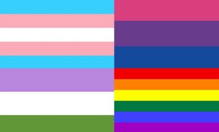Transoranz - Flaggen
